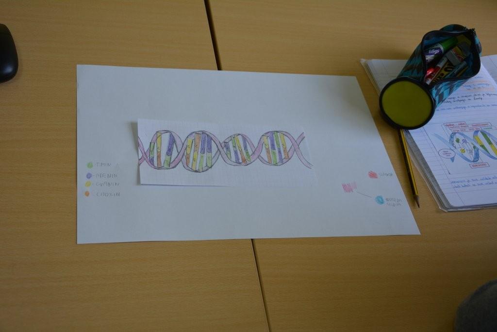 Kako zveni DNK/Hogyan hangzik a DNS (2015/2016)